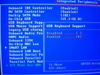 В БИОСе клавиатура работает в Windows нет